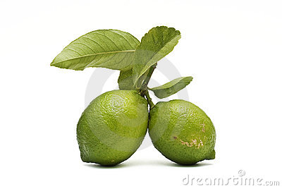 Two lemons witn leaves.
