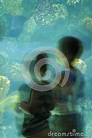 Free Two Little Boys At Aquarium - Motion Blur Stock Image - 1038661