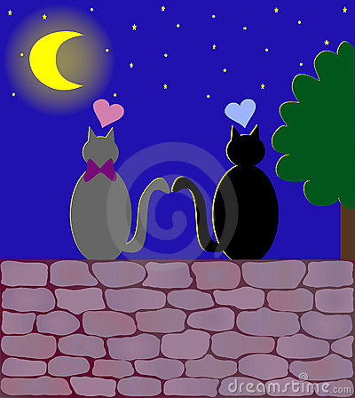 Two love cats under the moon