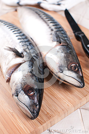 Two mackerel raw fish heads closeup