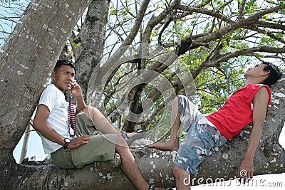 Two man enjoy on tree