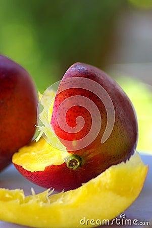 Two mangoes fruits