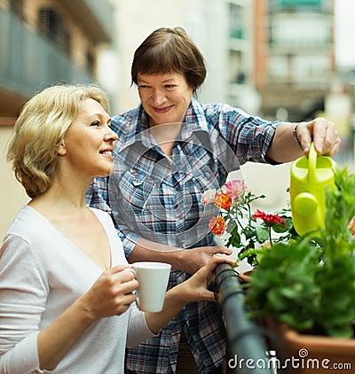 Two mature women drinking tea
