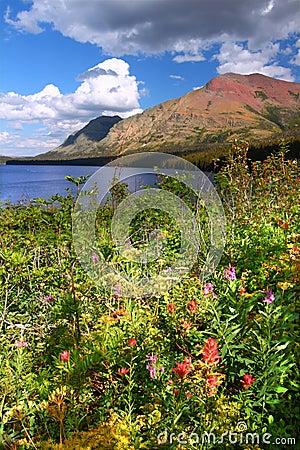 Two Medicine Lake in Montana