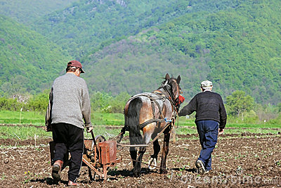 Two men and a horse plowing and sowing