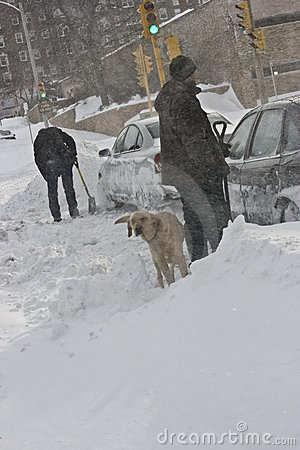 Two Men Shoveling Cars After a Blizzard