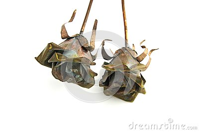 Two metal rose decorations