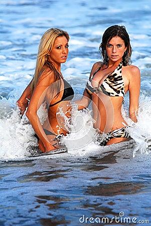 Two Models in the ocean
