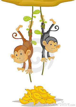 Free Two Monkeys Stock Photos - 8957503