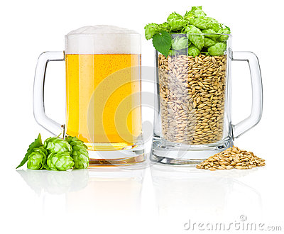 Two Mug: fresh beer and full of barley hops