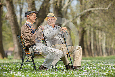 two old friends sitting on a wooden bench stock photo