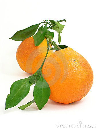 Free Two Oranges 4 Stock Images - 2120454