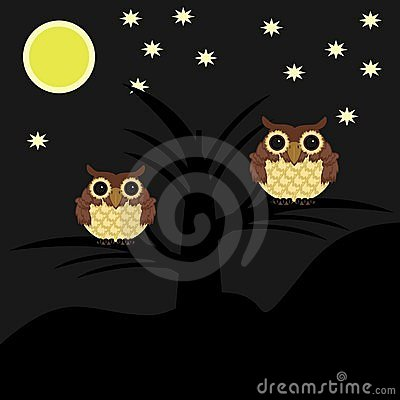 Two owls on tree