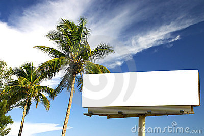Two Palm trees and billboard