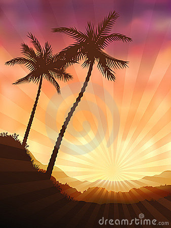 Two Palms Royalty Free Stock Image - Image: 10103506