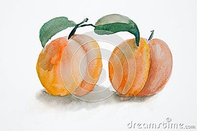 Two peach