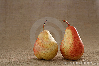 Two perfect red pears on hessian burlap background