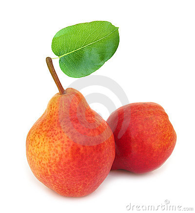 Two perfect red pears with leaf
