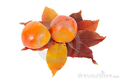Two persimmons and autumn leaves.