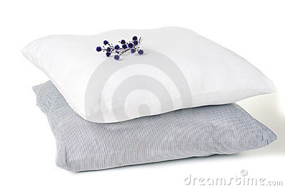 Two pillows and a branch of flowers