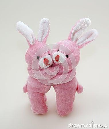 Two pink rabbits cuddling