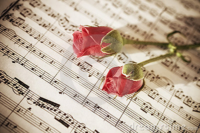Two Pink roses on sheets of musical notes