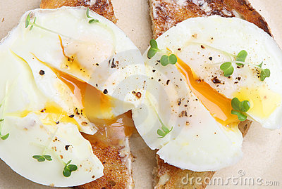 Two Poached Eggs on Toast