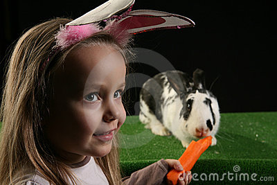 Two rabbits 2