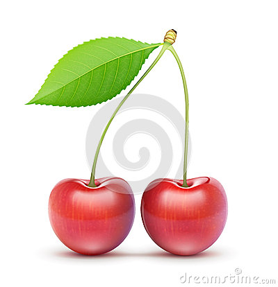 Free Two Red Fresh Cherries Stock Images - 27288064