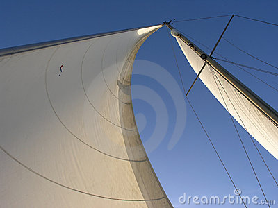 Two sails: genoa and Mainsail
