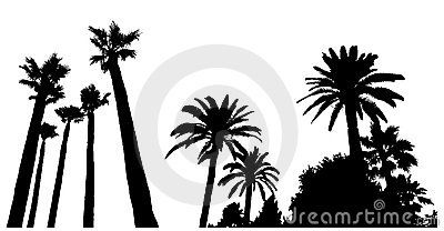 Two scenes with palm tree silhouettes