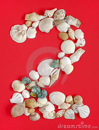 Two with sea shells