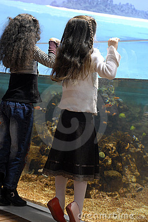 Two sisters and big aquarium