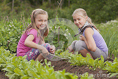 Two sisters working in vegetable garden