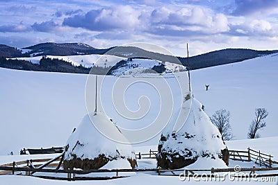 Two snowed haystacks