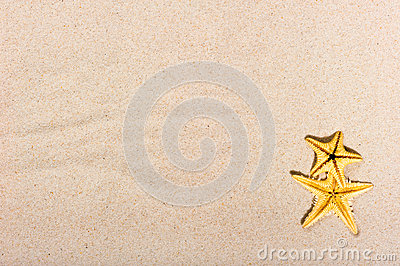 Two starfish on fine sand