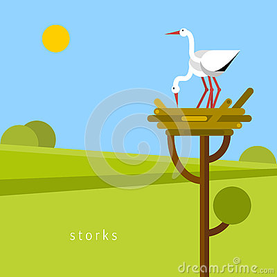 Two stork in the nest. Vector Illustration