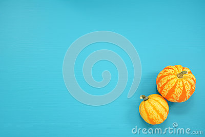 Two striped Festival squash on a teal background Stock Photo