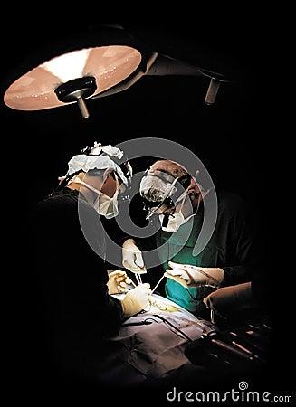 Two surgeons operating