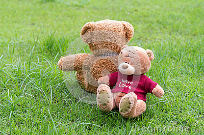 Two TEDDY BEAR brown color sitting on grass Editorial Stock Image