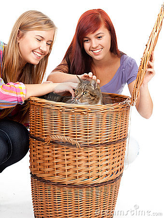Two teenage girls  with cat