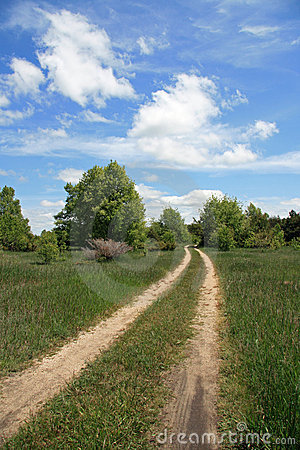 Two-track Dirt Road in Country