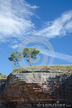 Free Two Trees At The Edge Of A Cliff Formation Stock Image - 41830431