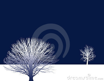 Two trees background