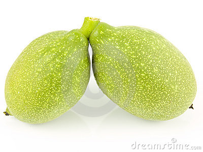 Two unripe walnuts