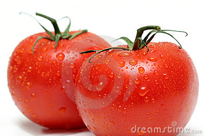 Two vine tomatos macro