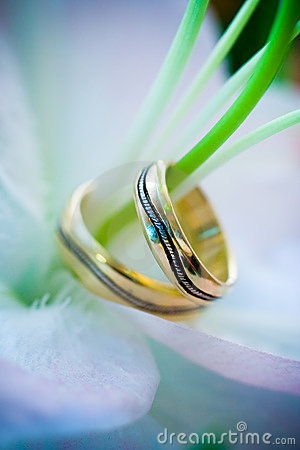 Two wedding rings on a flower