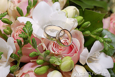 Two wedding rings on pink rose flower
