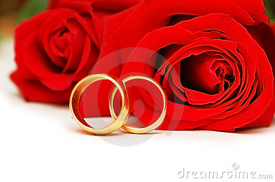 Two wedding rings and red rose