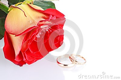Two wedding rings with a rose as wedding concept